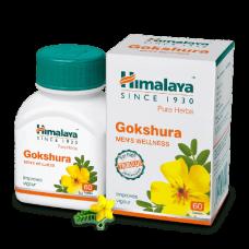 БАД для мужчин Гокшура Gokshura Himalaya 60 таблеток  купить