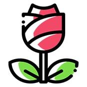 Цветочные добавки к чаю (5)