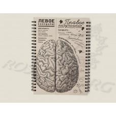 Блокнот Мозги - Правое полушарие 15х21 см